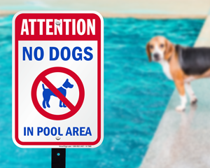No dogs in pool sign