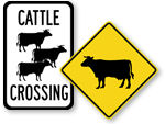Cattle Crossing Signs