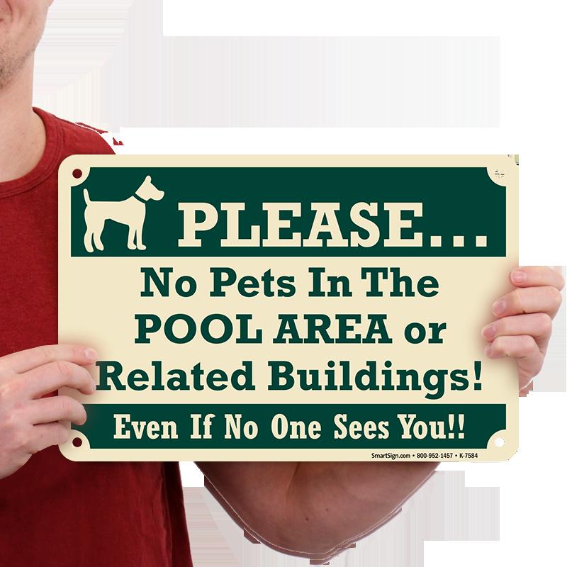 No Pets In Pool Area Or Buildings Sign Sku K 7584